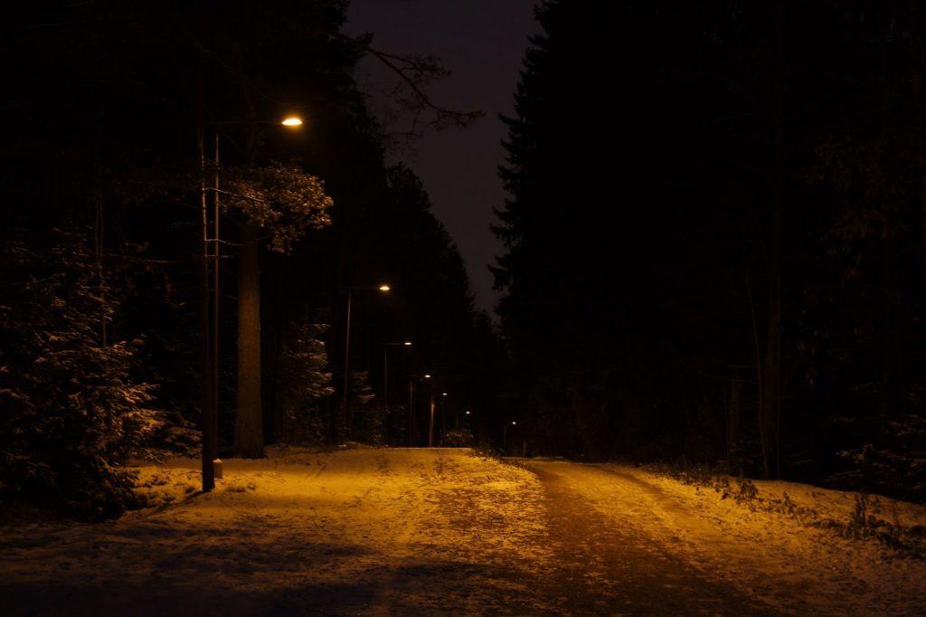 Espoon keskuspuisto aamuhämärässä