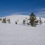 Lumikengillä kevyesti Palkaskerolle