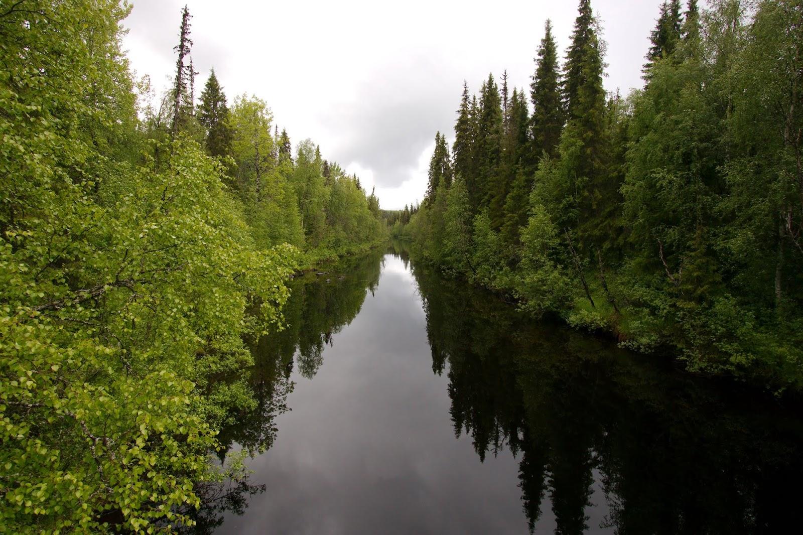 Auttikönkään luontopolku Rovaniemellä – huippukohde lapsiperheelle