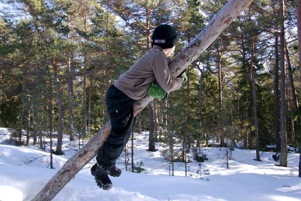 Kiipeilyä puussa