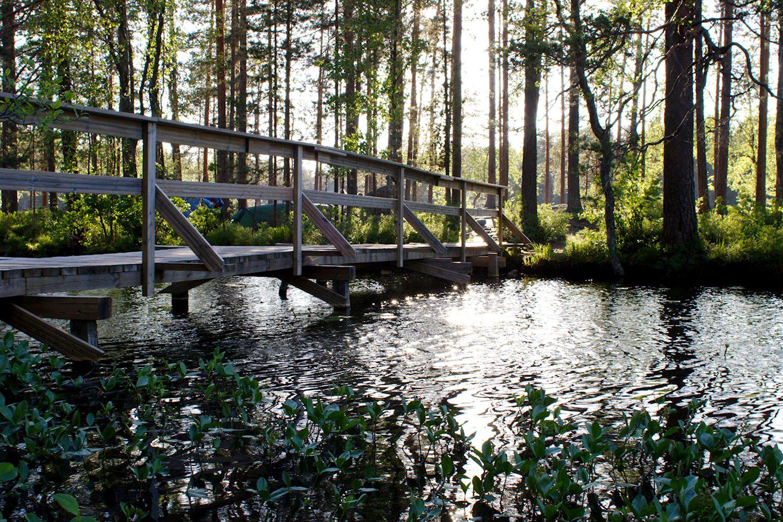 Kesänviettoa Holma-Saarijärvellä
