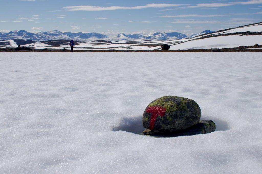 Reittimerkki on paljastunut lumen alta