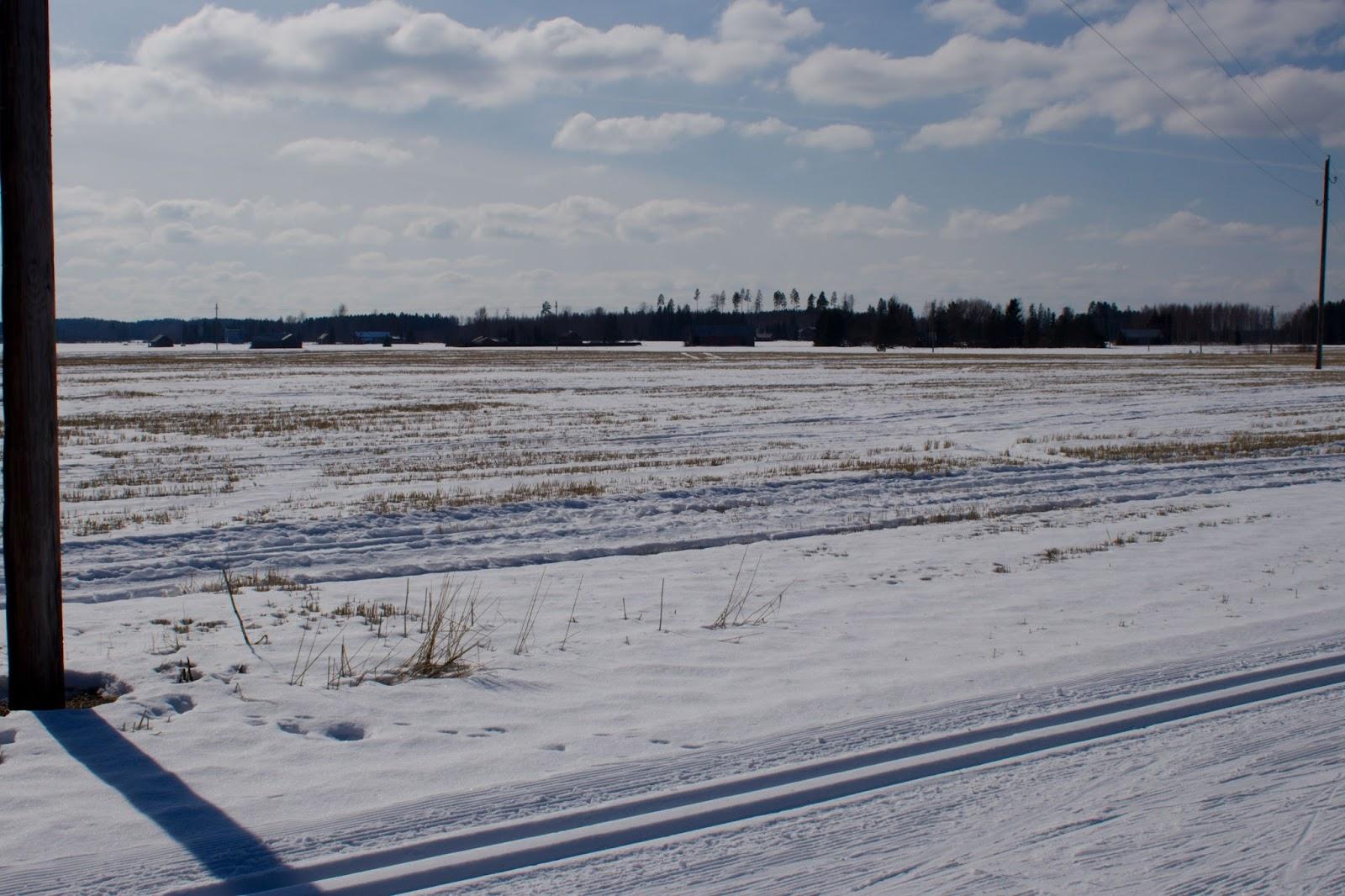 Luminen peltomaisema kylpee auringossa