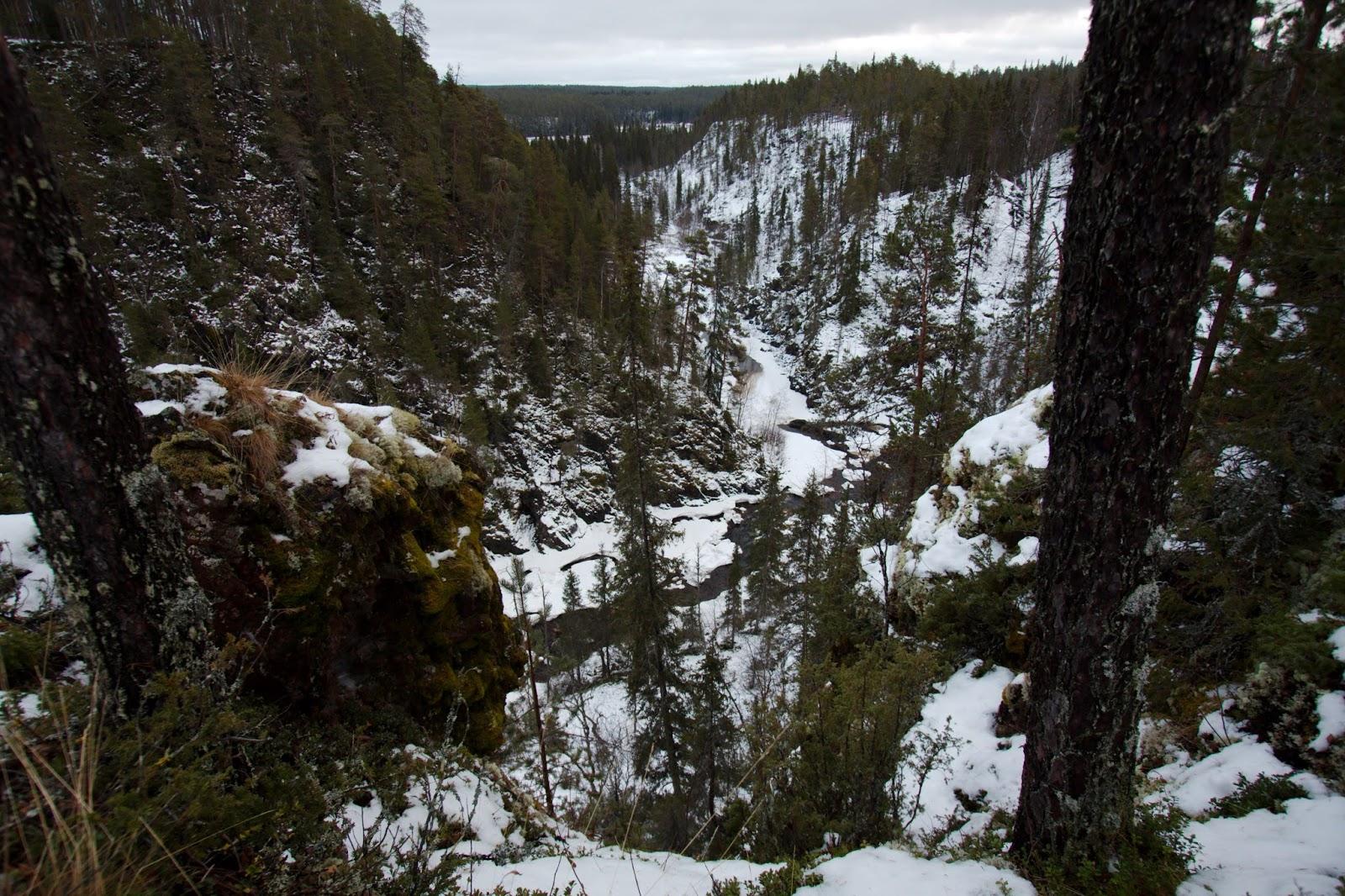 Näkymä alas Oulangan kanjoniin