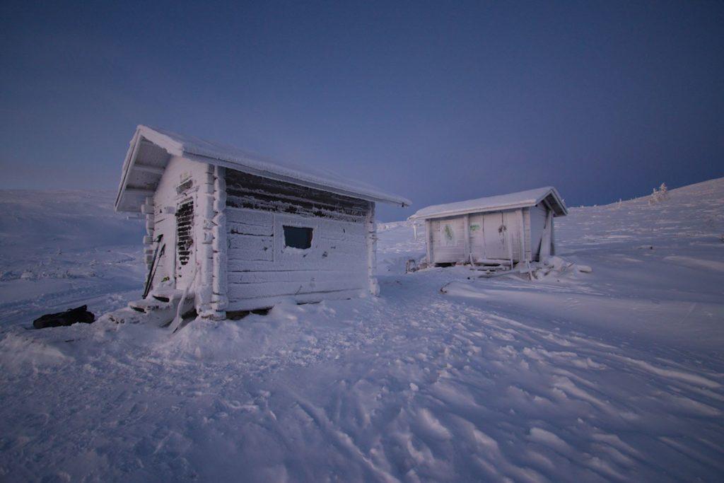 Montellin maja ja puuvaja joulukuun valossa