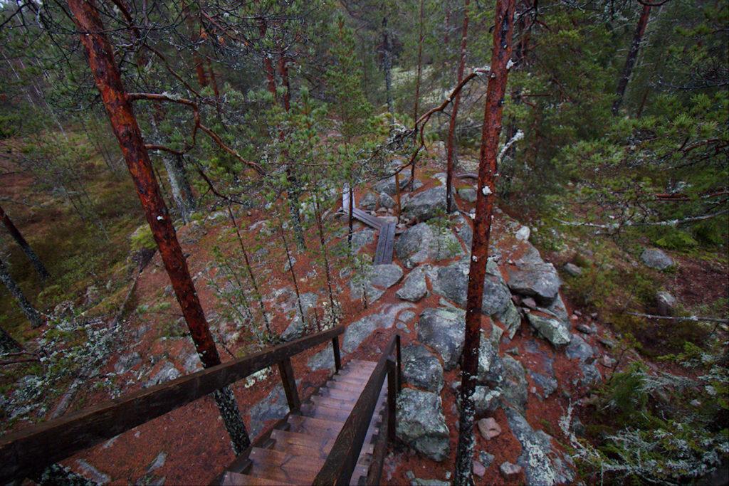 Vajosuon luontotornin portaat