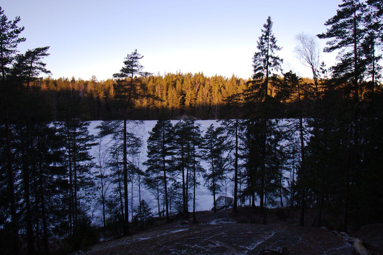 Näköala kallion päältä Hynkänlammelle