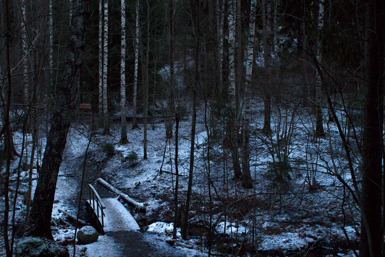 Puron ylittävä silta tammikuun hämärässä