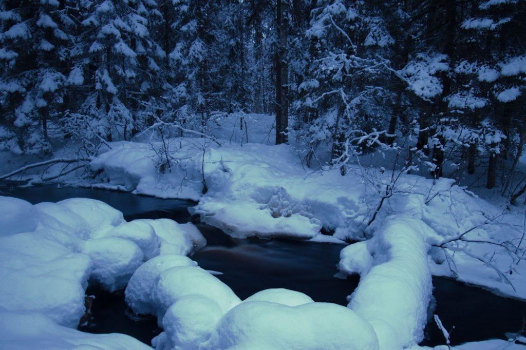 Talviaho, Salamajärvi