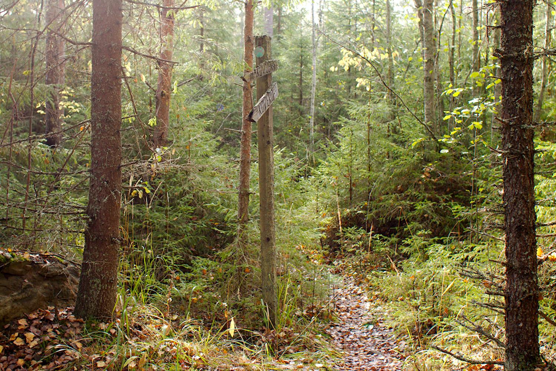 AIkaa nähnyt opaste polun varressa Hakovuoren juurella