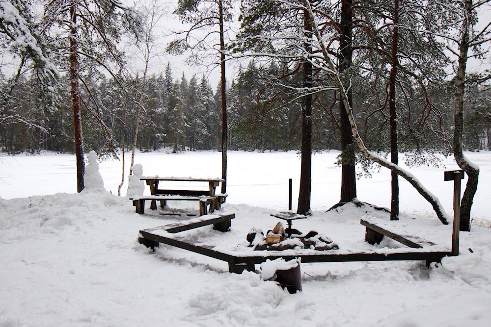 Korsolammen tulipaikka talvella