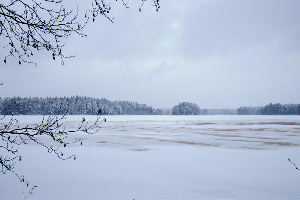 Liesjärvi talvella