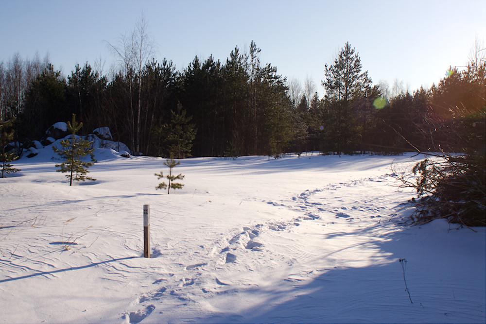 Kaarniaspolku talvella vanhan kaatokpaikan kohdalla