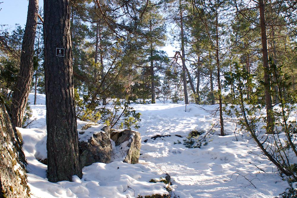 Polku Högbergetin luolalle