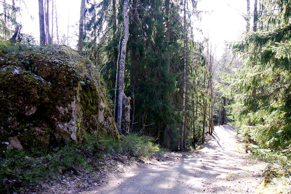 Meerlammen luolan vierestä kulkeva tie juuri ennen luolaa.
