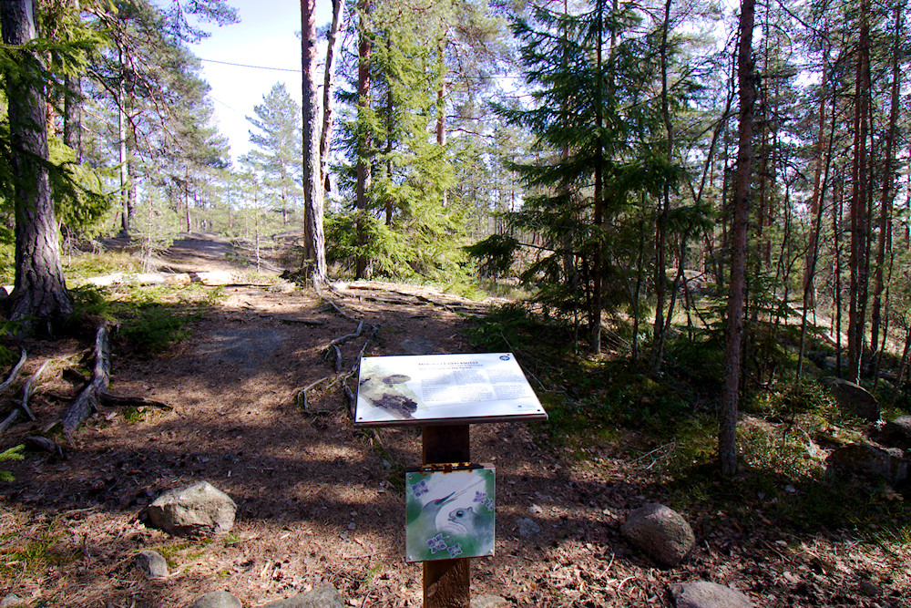 Luontopolkutaulu Päivättärenpolulla